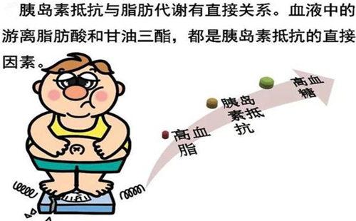 胰岛素抵抗 (2).jpg