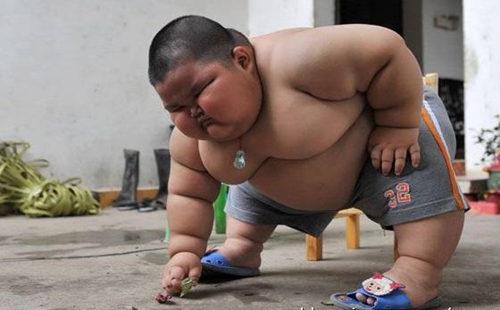 肥胖.jpg