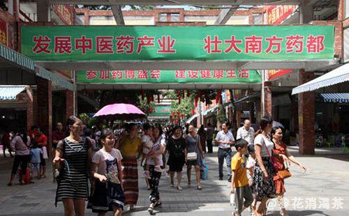 第十届中国中医药博览会在南方药都玉林开幕 签约项目额129亿元