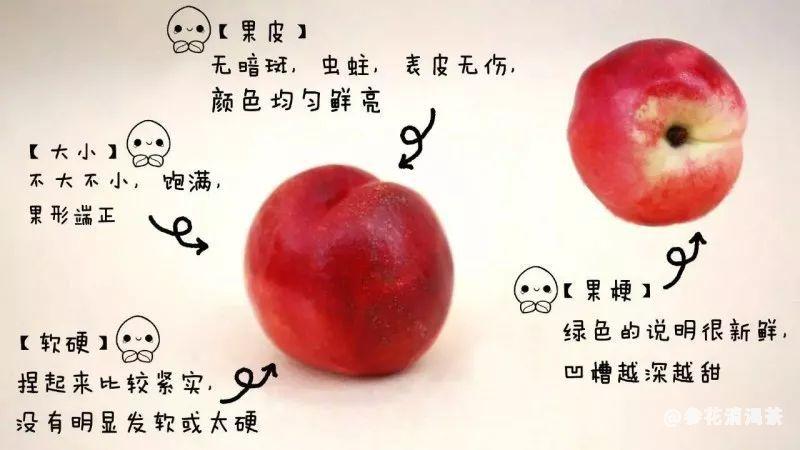 一张图学会如何挑选桃子